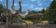 World's largest feathered dinosaur coming to Nottingham's Wollaton Hall