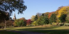 Mixed response to Public Parks Inquiry