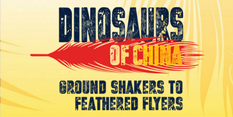 Dinosaurs of China logo
