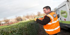 Hedge cutting service gearing up