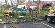 Clean up in Bulwell