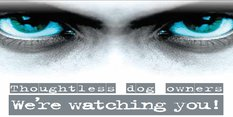 Irresponsible Dog Owner? We're Watching You!