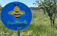 Lockdown helps city efforts to nurture bee friendly spaces