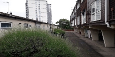 Greener homes on the way in Nottingham